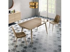 EXTENSIBLE TABLE ANUD