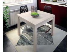 EXTENSIBLE TABLE P122