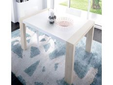 EXTENSIBLE TABLE P123