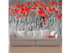 Fotomural - Papoilas vermelhas em fundo preto e branco