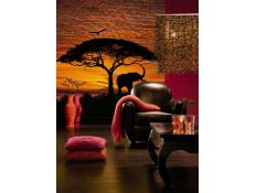 Ambiente Fotomural African Sunset