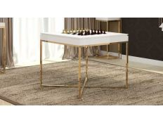 COFFEE TABLE HEWMAN