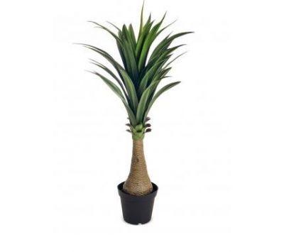 PLANT WITH VASE ALPEI