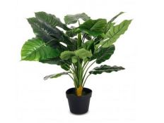 PLANT WITH VASE COVEU