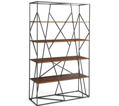 Bookcase Spider I