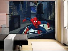 Photomural Spider Man IV