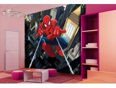 Photomural Spider Man I