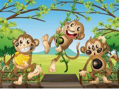 Photomural Monkeys