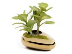 Planta artificial suculenta VII