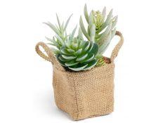 Planta artificial suculenta XIII