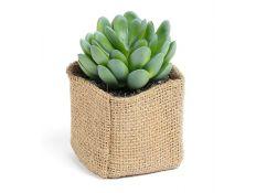 Succulent artificial plant XIV