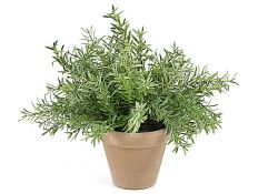 Plant artificial Romero