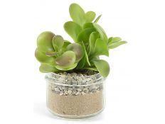 Planta artificial suculenta XXIII