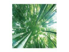 Quadro Bambú