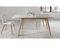 EXTENDABLE TABLE YDOOW