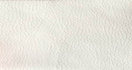 SYNTHETIC LEATHER WHITE